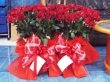 101 Red Chinese Roses in Vases (Valentine)