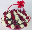 50 Fresh Red and White Thai Roses - Basket (XXXL)