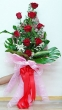 9 Fresh Red Chinese Roses - Tall Bouquet (XL)