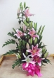 Fresh Pink and White Lilies - Basket (XL)