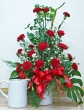 Fresh Red Carnations in Vase (XL)