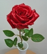 Fresh Red Glittered Chinese Rose to Add To Order