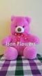 Pink Bear B Soft Toy (M)