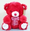 Red Bear Soft Toy (M)